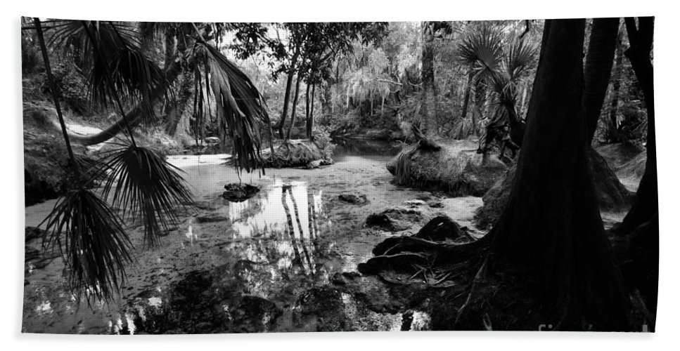 Florida Beach Towel featuring the photograph Precolumbian Florida by David Lee Thompson