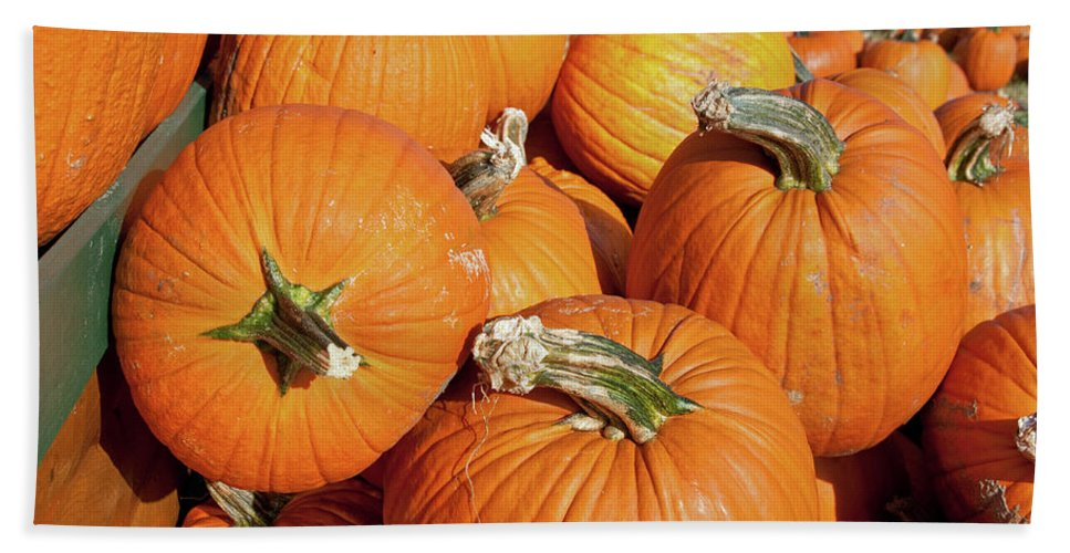 Fall Beach Towel featuring the photograph Pumkins Everywhere by David Arment