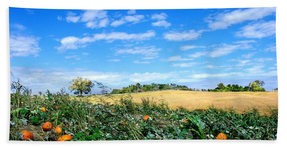 Landscape Beach Towel featuring the photograph Pumpkin Patch by Steve Karol