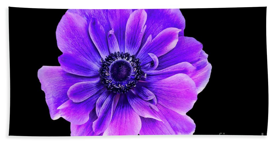 Purple Flower Beach Towel featuring the photograph Purple Anemone Flower by Mariola Bitner
