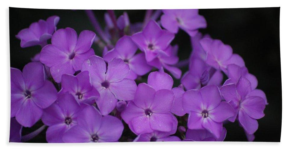 Digital Photo Beach Sheet featuring the photograph Purple Blossoms by David Lane