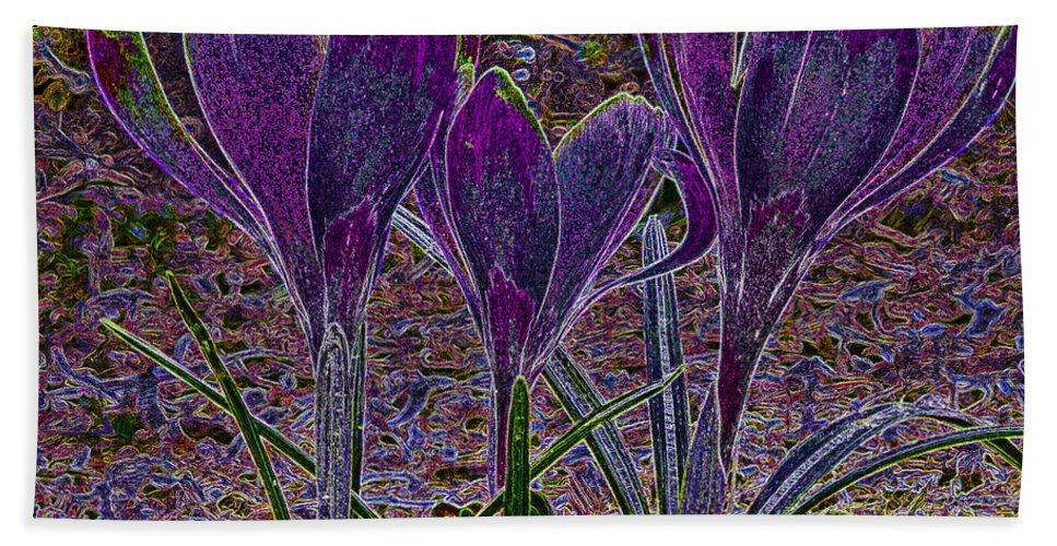 Purple Crocuses Beach Towel featuring the photograph Purple Crocuses by Sharon Talson