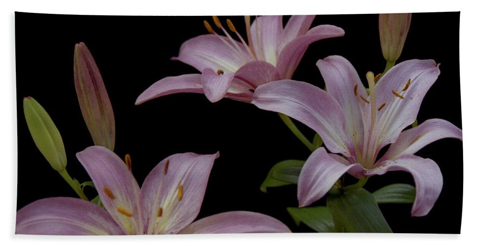 Flower Beach Towel featuring the photograph Purple Day Lilies by Michael Peychich