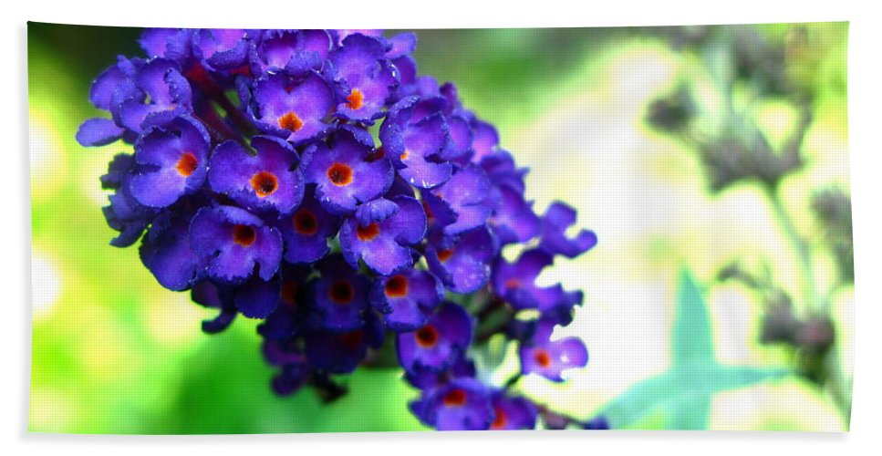Butterfly Bush Beach Towel featuring the photograph Purple Peace by Brittany Horton