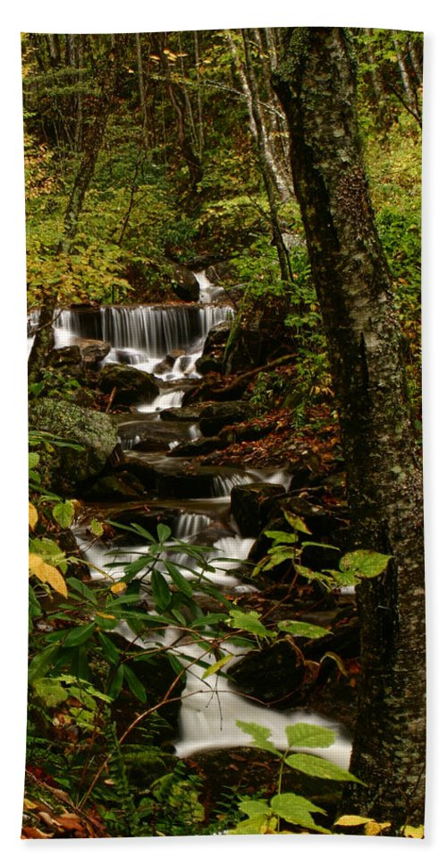 Water Beach Towel featuring the photograph Quiet Autumn Stream by Shari Jardina