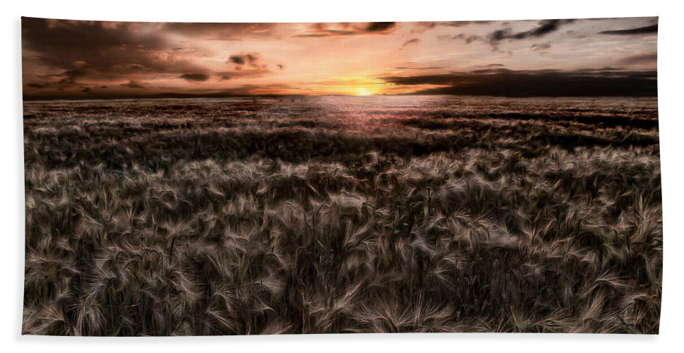 Summer Beach Towel featuring the photograph Quiet Estivation by Joachim G Pinkawa