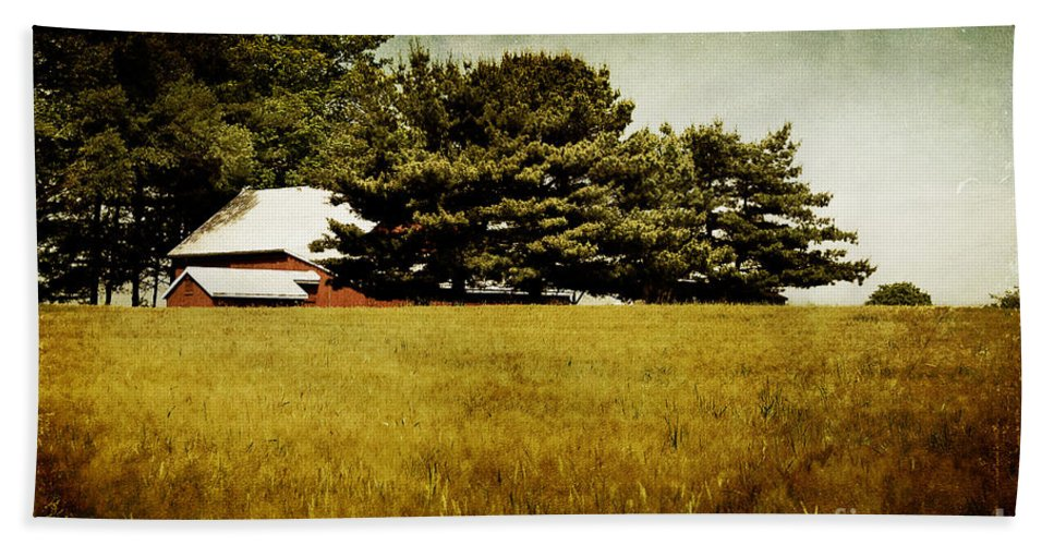 Barn Beach Towel featuring the photograph Quiet by Lois Bryan
