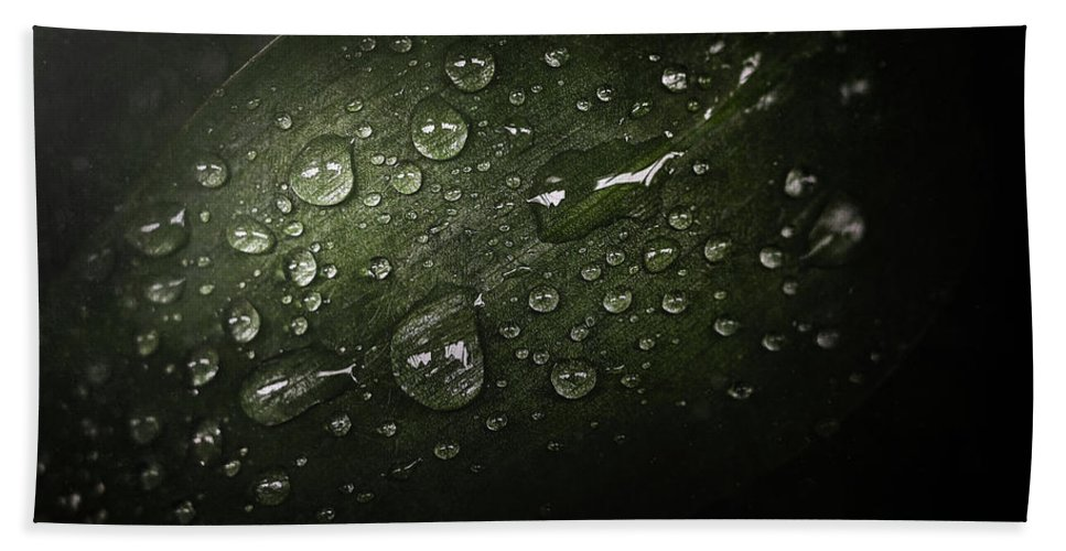 Macro Beach Towel featuring the photograph Rain Drops On Leaf by Scott Norris