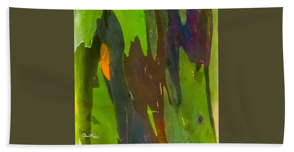 susan Molnar Beach Towel featuring the photograph Rainbow Eucalyptus 6 by Susan Molnar