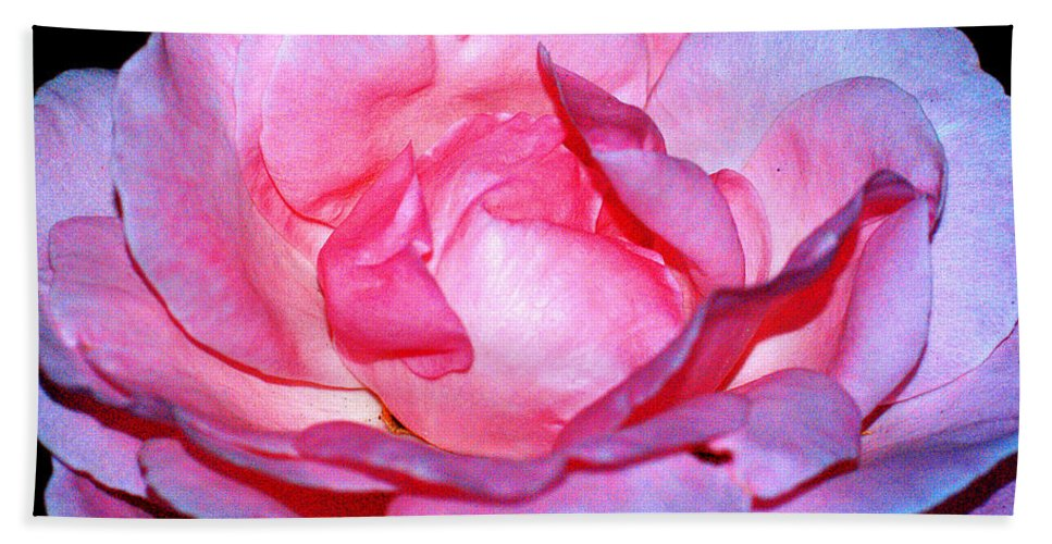 Clay Beach Towel featuring the photograph Rainbow Rose by Clayton Bruster