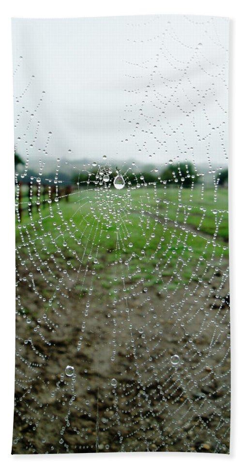 Web Beach Towel featuring the photograph Raincatcher Web by Susan Baker