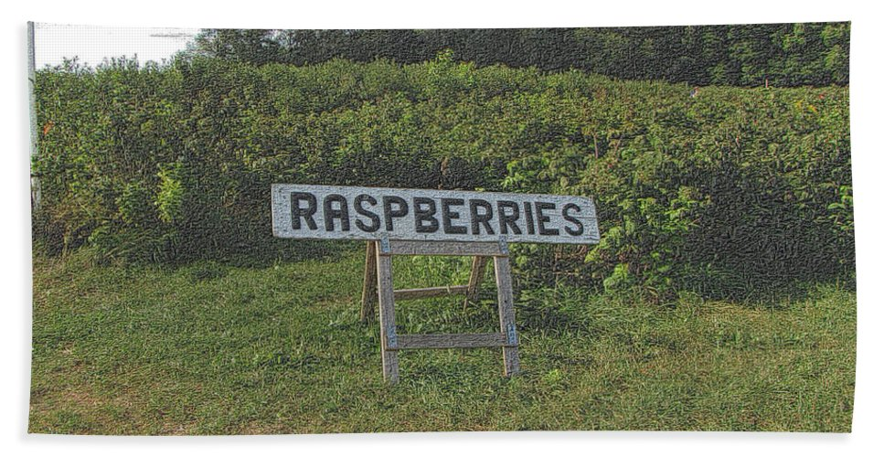 Country Beach Towel featuring the photograph Raspberry Fields Three by September Stone