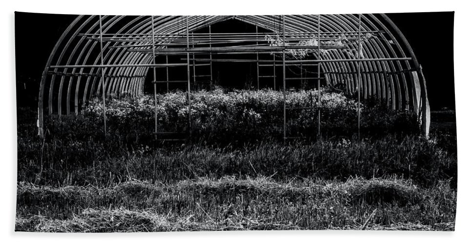 Greenhouse Beach Towel featuring the photograph Reclaimed Greenhouse 3 by James Aiken