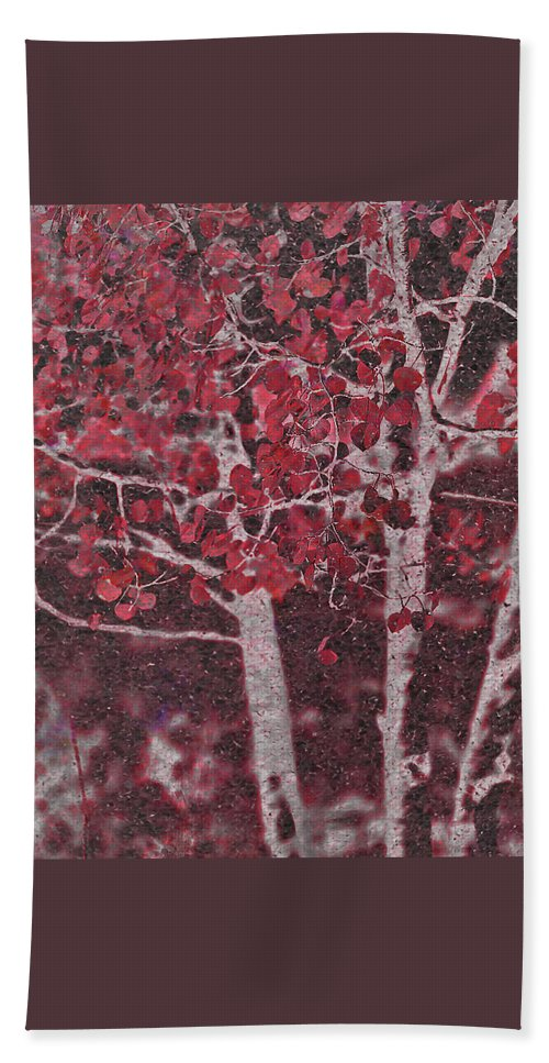 Red Beach Towel featuring the photograph Red Aspen by Jim And Emily Bush