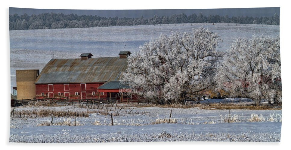 Winter Beach Towel featuring the photograph Red Barn in Winter by Alana Thrower