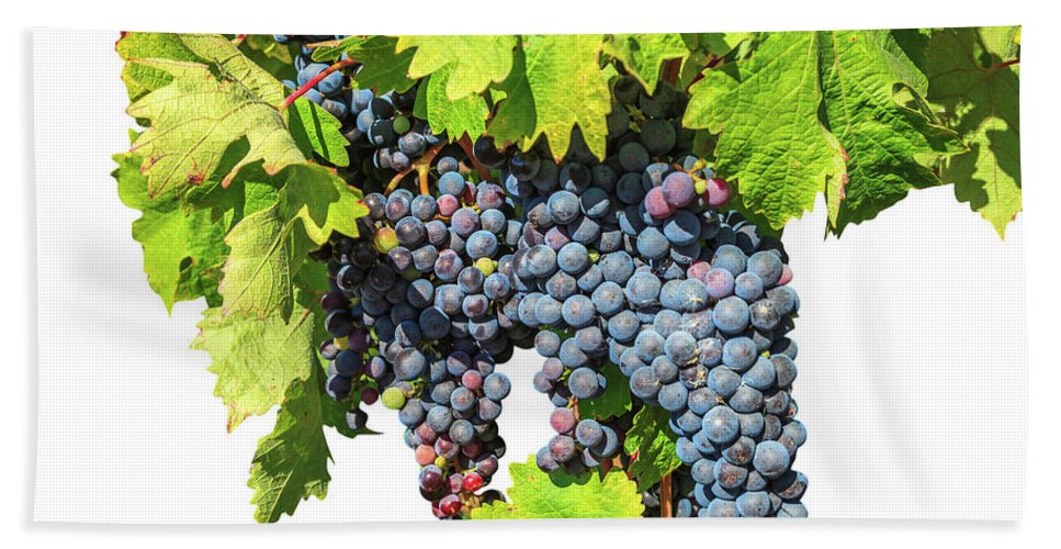 Red Grapes Beach Towel featuring the photograph Red Grapes Seasonal Background by Benny Marty