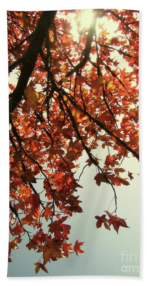 Red Leaf Beach Towel featuring the photograph Red Life by Ilaria Andreucci