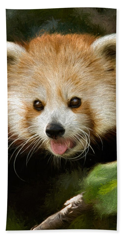 Adorable Beach Towel featuring the photograph Red Panda by Lana Trussell