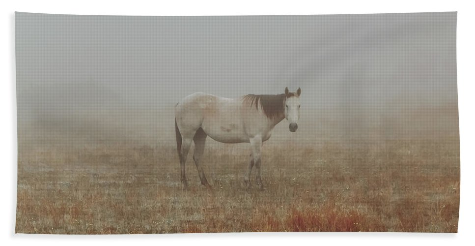 Horse Beach Towel featuring the photograph Red Roan In Mist by Robert Frederick