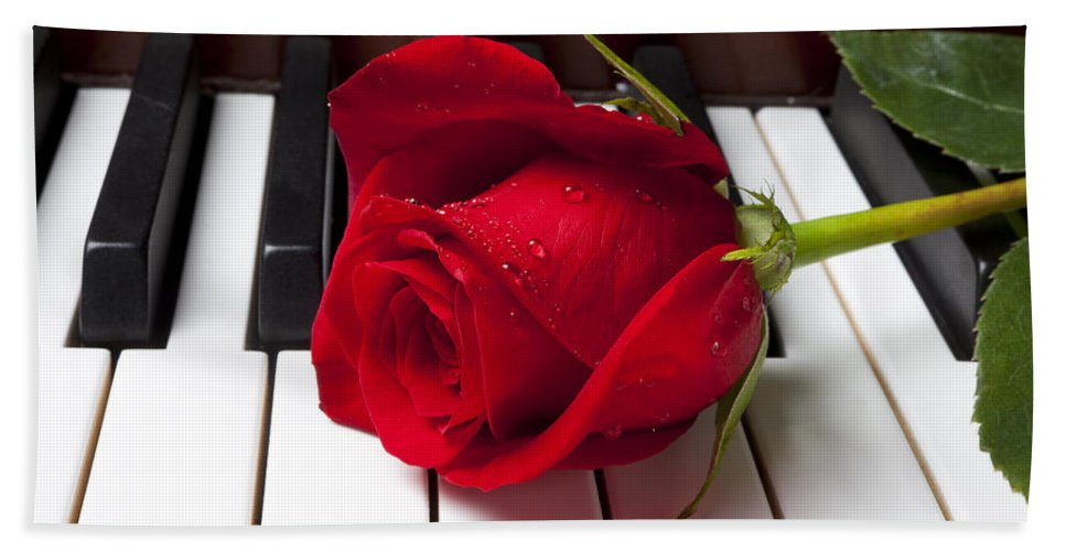 Red Rose Roses Beach Towel featuring the photograph Red Rose On Piano Keys by Garry Gay