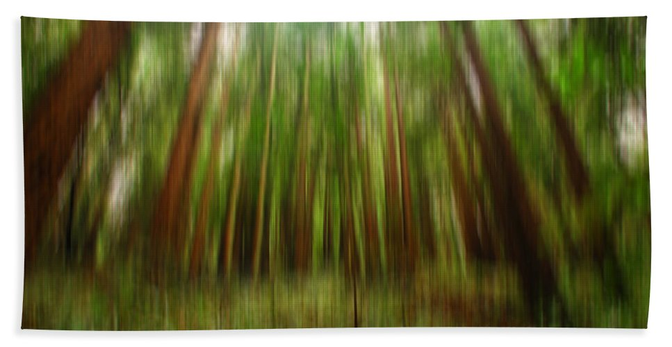Redwoods Beach Towel featuring the digital art Redwoods by Donna Blackhall