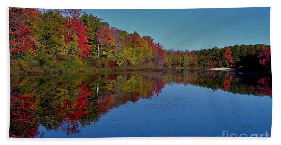 Autumn Beach Towel featuring the photograph Reflected Color by Rick Monyahan