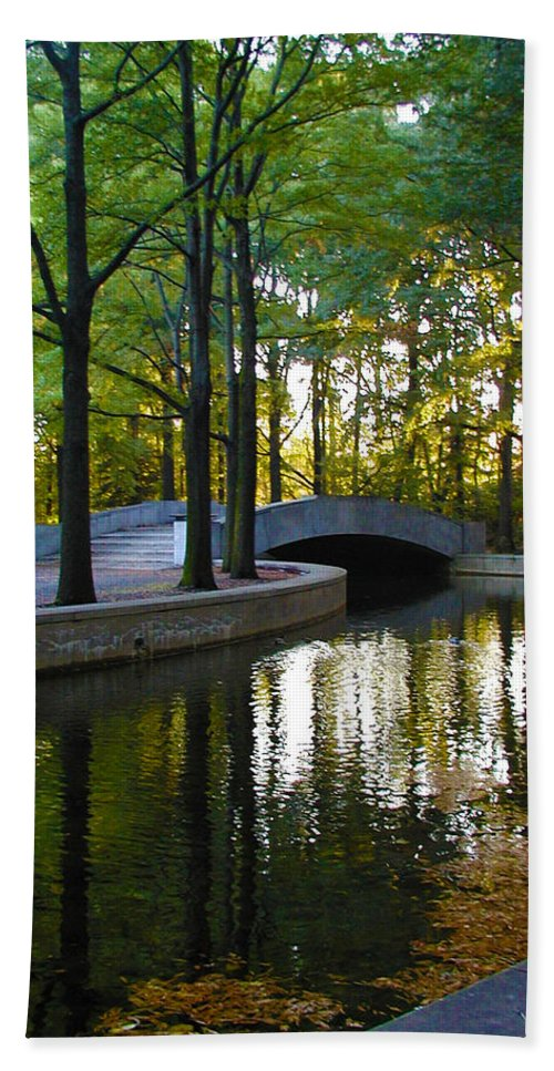 Washington Beach Towel featuring the photograph Reflecting Pool Roosevelt Park by Bill Cannon