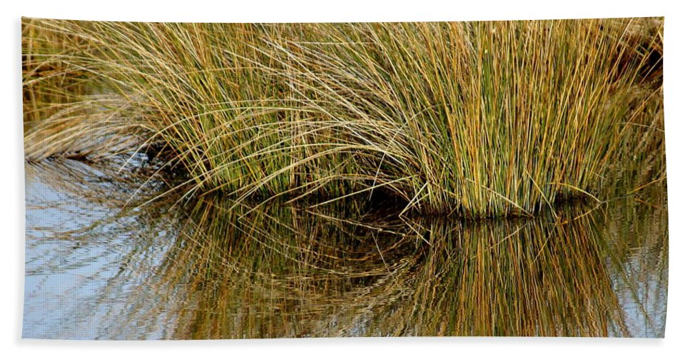 Reflections Beach Towel featuring the photograph Reflecting Reeds by Marty Koch