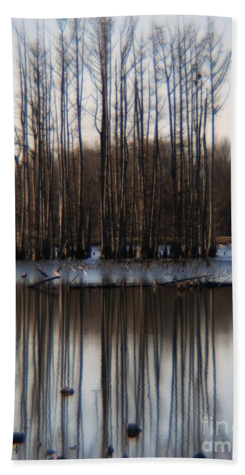 Nature Beach Towel featuring the photograph Reflection by Amanda Barcon