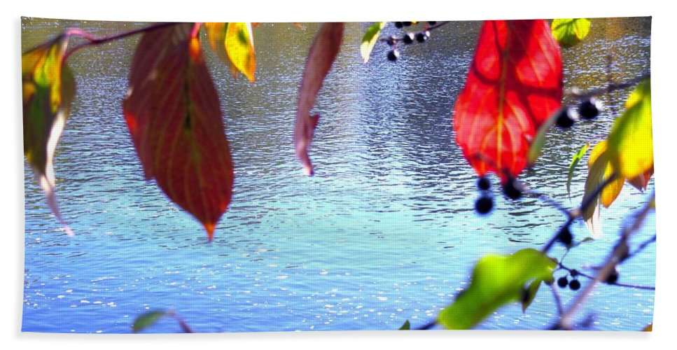 Water Beach Towel featuring the photograph Refreshing View by Sybil Staples