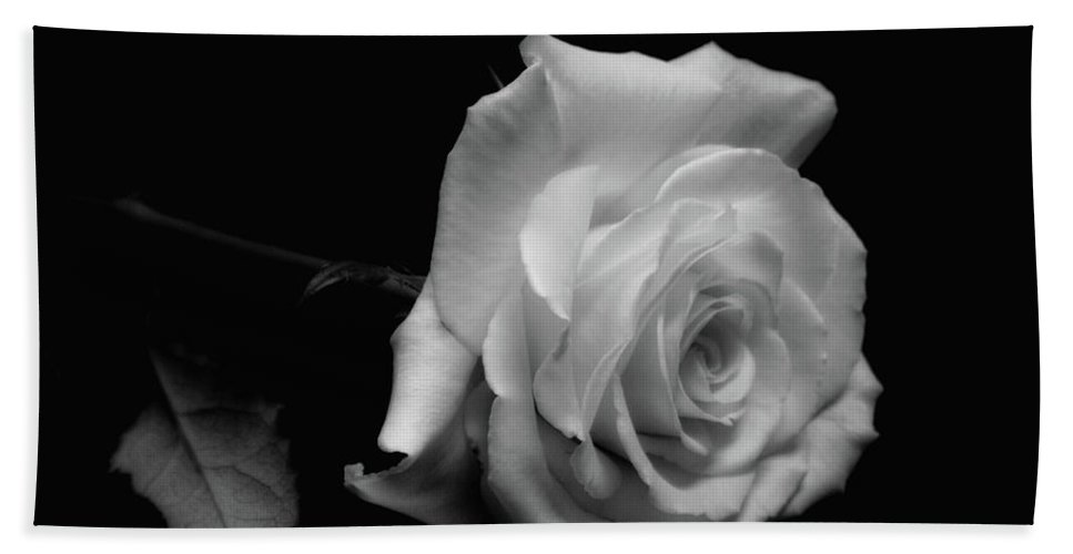Rose Beach Towel featuring the photograph Rest In Peace by Donna Blackhall