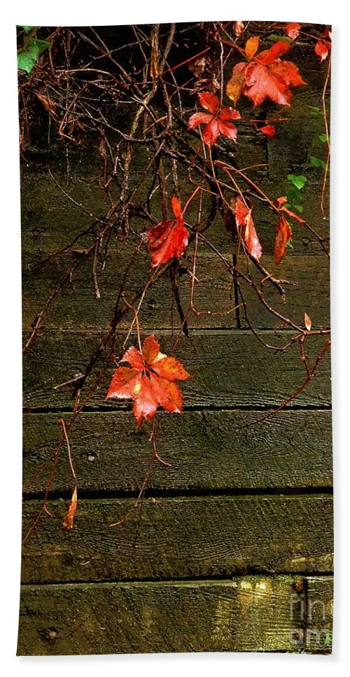 Autumn Beach Towel featuring the painting Retaining Wall In Autumn by RC DeWinter