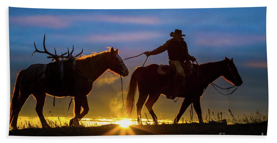 America Beach Towel featuring the photograph Returning Home by Inge Johnsson