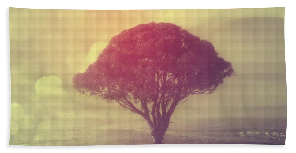 Tree Beach Towel featuring the photograph Revelation - 09 by Variance Collections