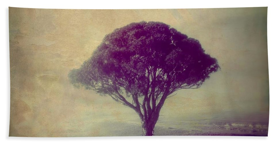 Tree Beach Towel featuring the photograph Revelation - 113vt by Variance Collections