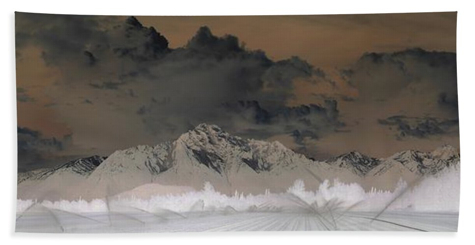 Landscape Beach Towel featuring the photograph Reverse Landscape by Ron Bissett