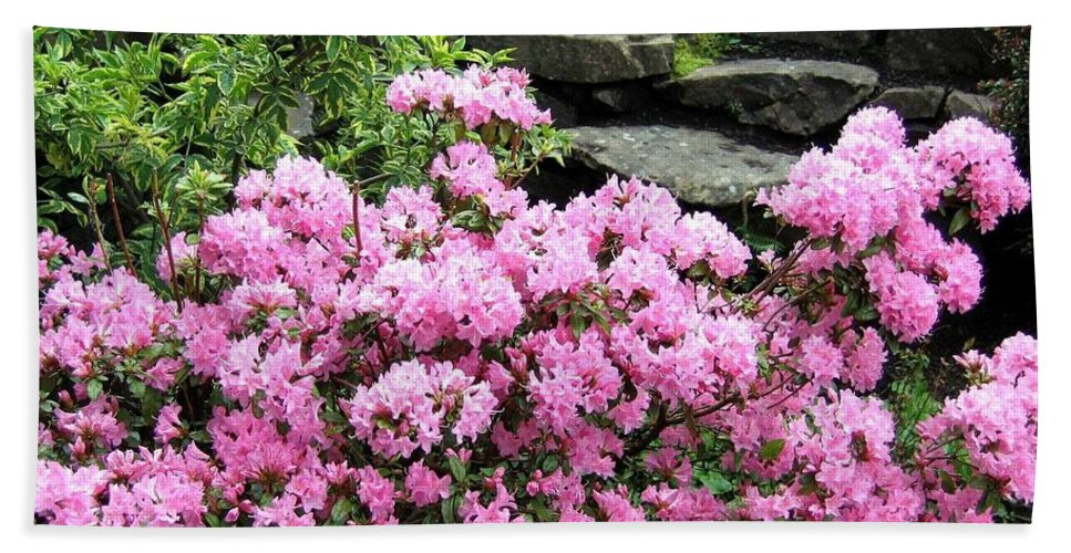Rhododendrons Beach Towel featuring the photograph Rhododendrons by Will Borden
