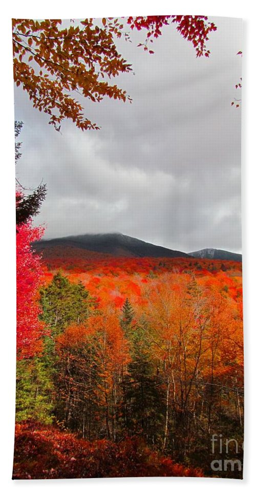 Autumn Beach Towel featuring the photograph Rich Fall New Hampshire Colors by Elizabeth Dow