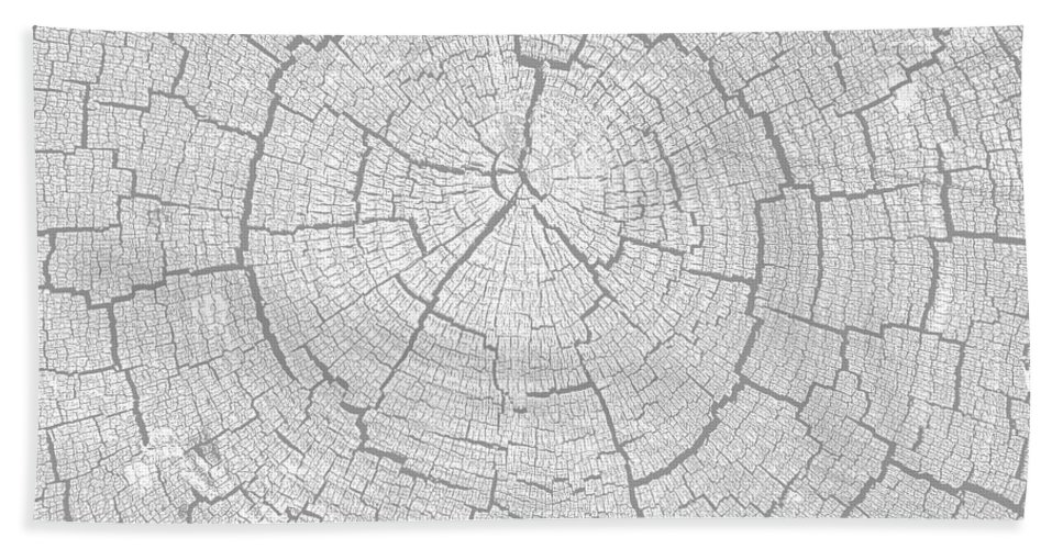Tree Rings Beach Towel featuring the photograph Rings Of Life by David Lee Thompson