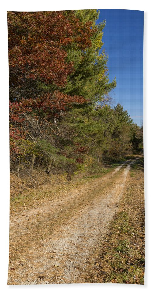 Road Beach Towel featuring the photograph Road In Woods Autumn 5 by John Brueske