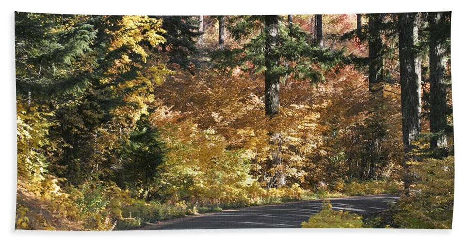 Road To Autumn Beach Towel featuring the photograph Road To Autumn by Wes and Dotty Weber