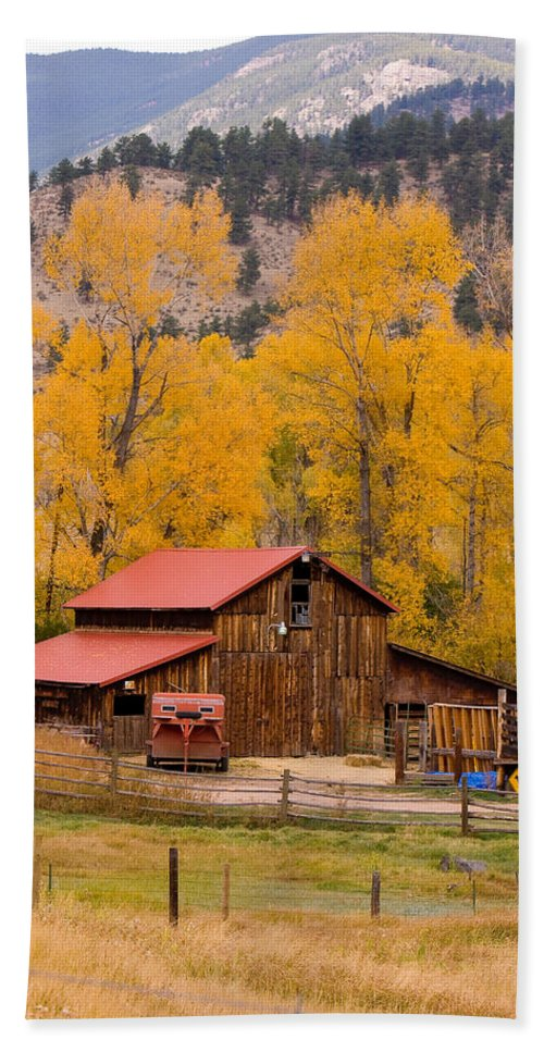 Rustic Beach Towel featuring the photograph Rocky Mountain Barn Autumn View by James BO Insogna