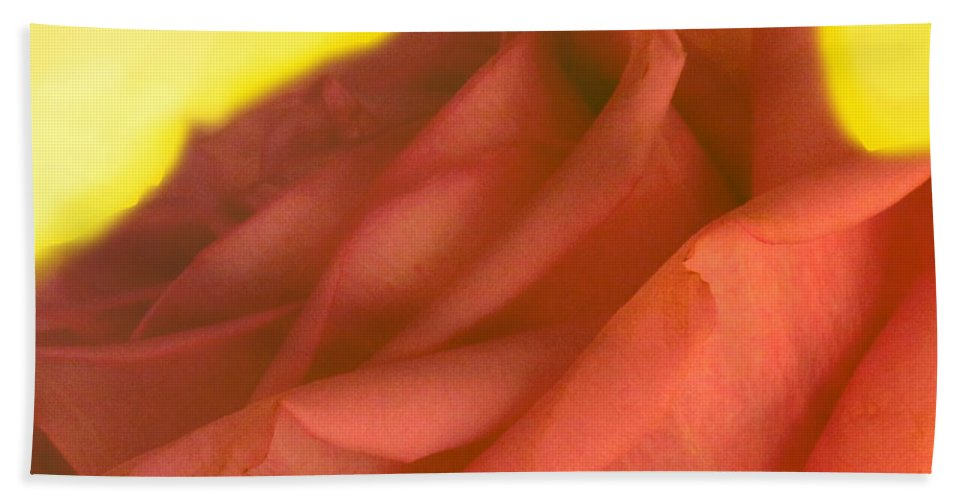 Rose Beach Towel featuring the photograph Rose At Sunset by Ian MacDonald
