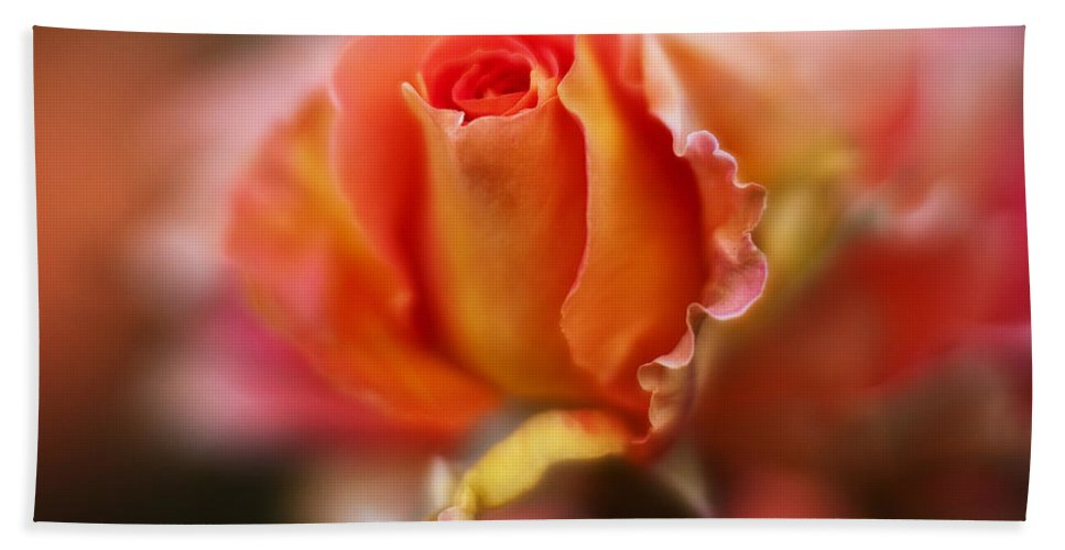 Rose Beach Towel featuring the photograph Rose Centerpiece by Mike Reid