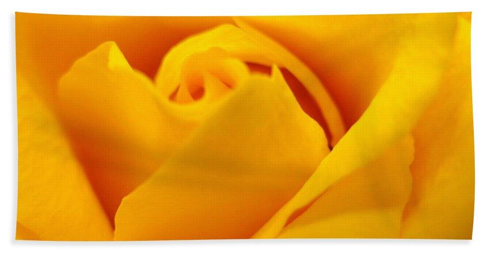 Rose Beach Sheet featuring the photograph Rose Yellow by Rhonda Barrett