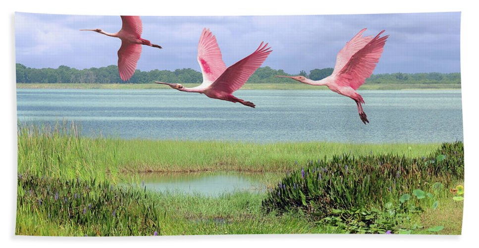 Birds Beach Towel featuring the digital art Roseate Spoonbills Of Florida Bay by M Spadecaller