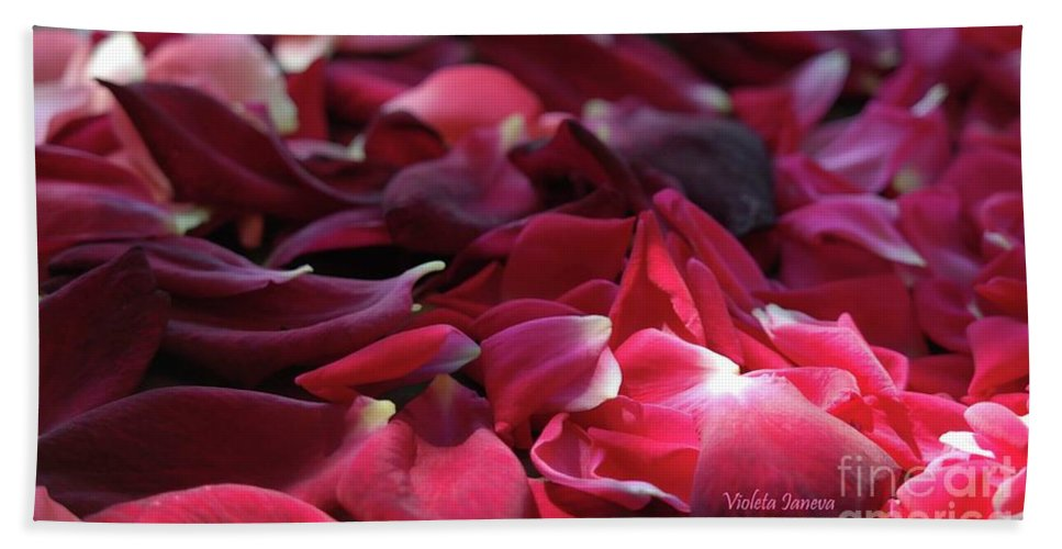 Roses Beach Towel featuring the photograph Rose Waves by Violeta Ianeva