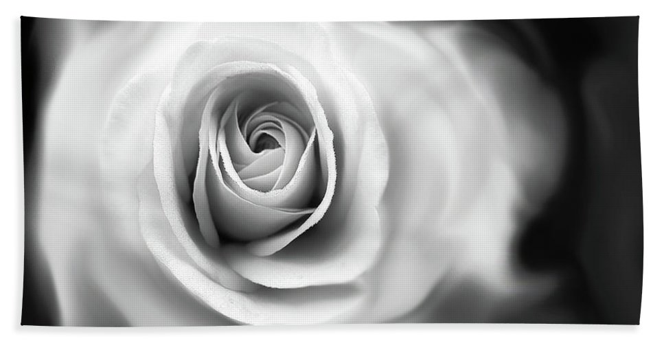 Rose Beach Towel featuring the photograph Rose's Whisper Black And White by Jennie Marie Schell