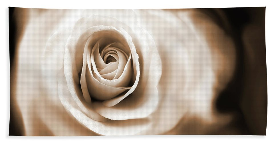 Rose Beach Towel featuring the photograph Rose's Whisper Sepia by Jennie Marie Schell