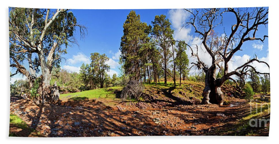 Sacred Canyon Flinders Ranges South Australia Australian Landscape Pano Panorama Outback Spring Beach Sheet featuring the photograph Sacred Canyon, Flinders Ranges by Bill Robinson